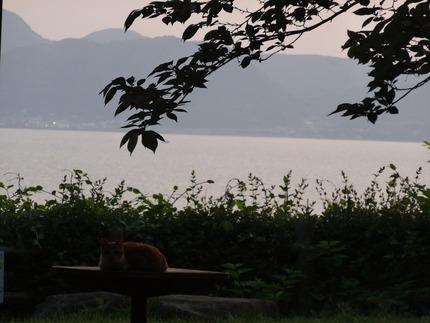 11-大村湾DSC00255