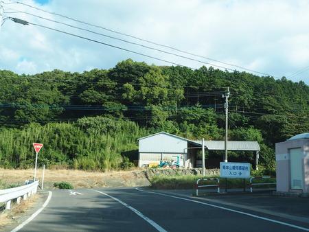 6-南島原市加津佐町 大地牧場のひまわり畑P8126281
