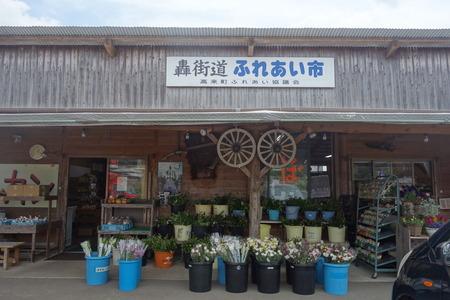 9-多良岳わさび苑DSC06456