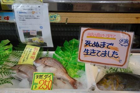 10-竹野鮮魚DSC09721
