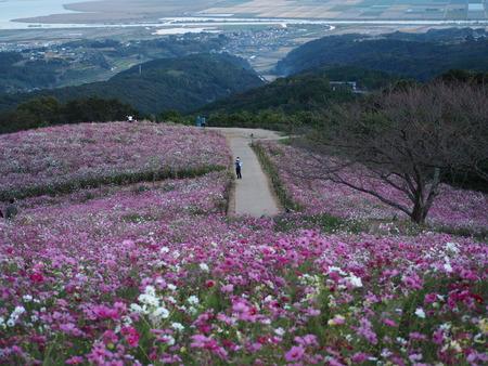 4−白木峰高原 夕方PA201125