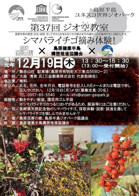 シマバライチゴ摘み