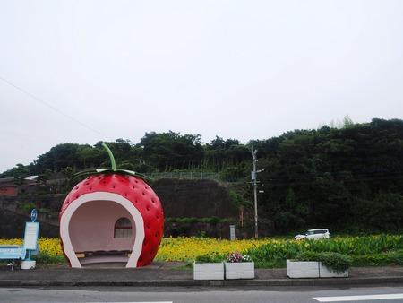 5-諫早市小長井町 フルーツバス停とひまわりP7193390