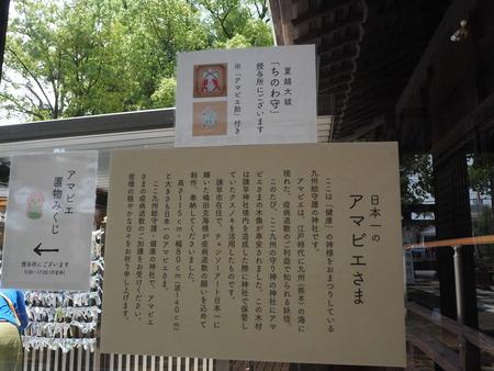 10−諫早神社P7080808