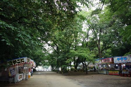 3-大村公園 花菖蒲DSC07500