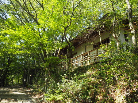 2021.09.19 諌早市森山町 喫茶Branch nuts.and.branchP9191932