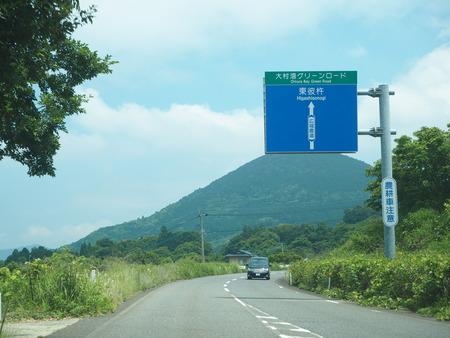 5-東彼杵町 そのぎ茶温泉 里山の湯宿 つわぶきの花P5310195