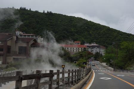 28-雲仙 仁田峠 ミヤマキリシマDSC06941