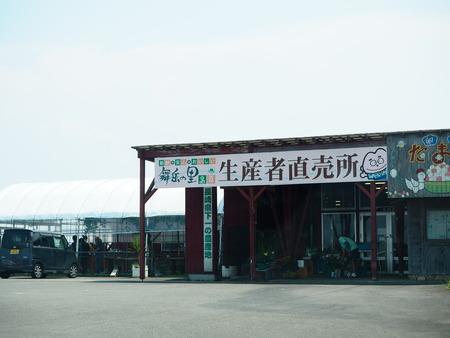 7-島原市有明町 松本農園製冰所P8220493