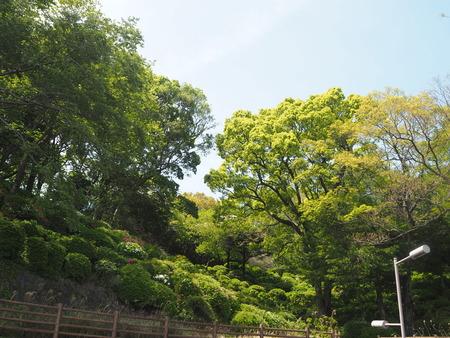2021.04.10 諫早公園、高城神社、上山つつじ園P4105868