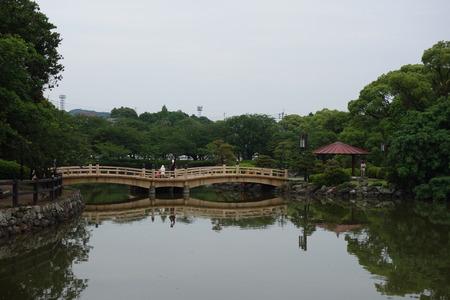 2-大村公園 花菖蒲DSC07489