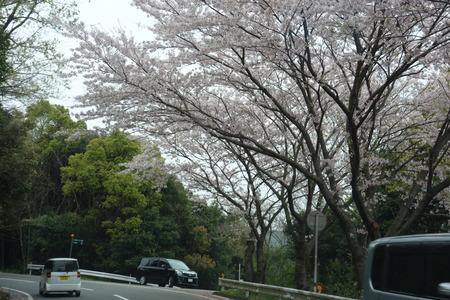 3-餅田山公園DSC01882