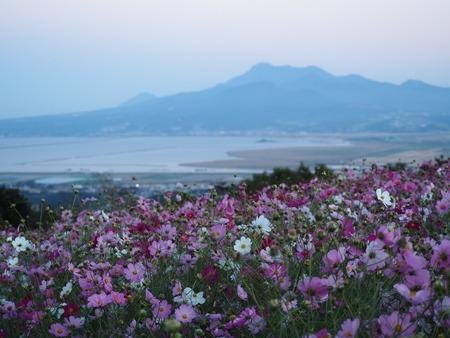 6−白木峰高原PA201155