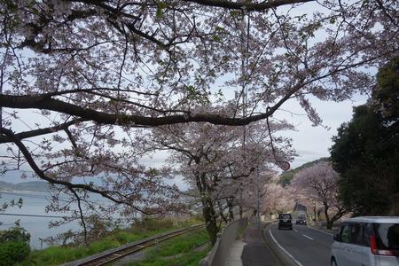 8-多良見町古川DSC05800