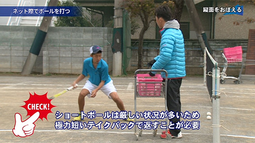 seimei_b03