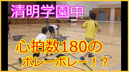 seimei_dvd