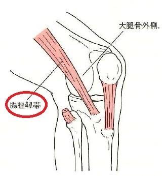 腸脛靭帯写真