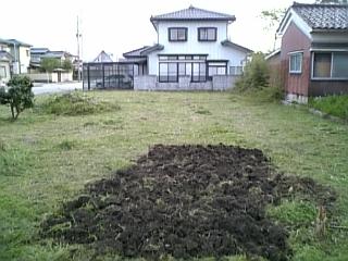 kaikon