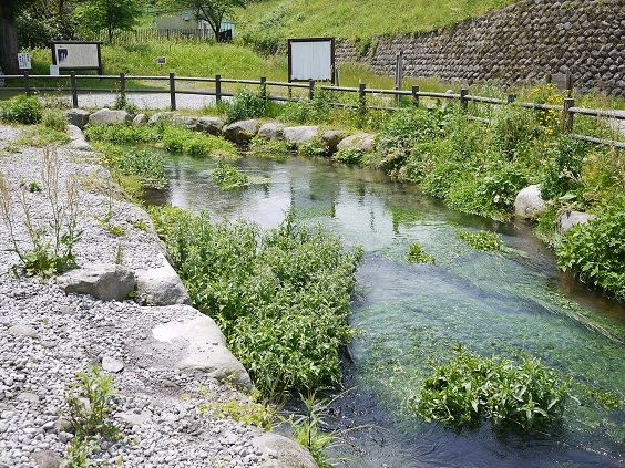 地蔵滝の泉1