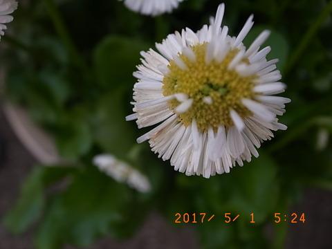 R9311116