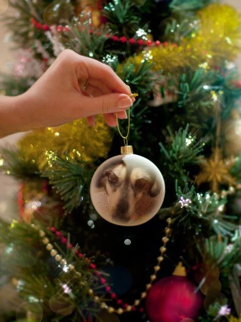 PhotoFunia-クリスマス3