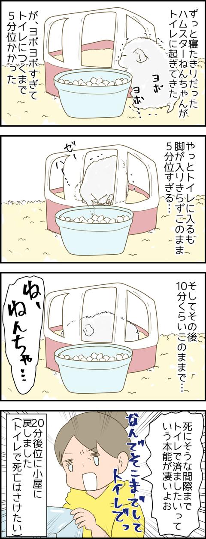 ねんちゃん