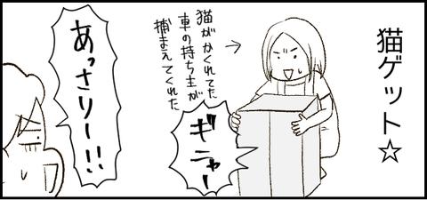 段ボール2