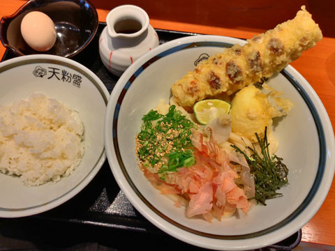 tenkomori1