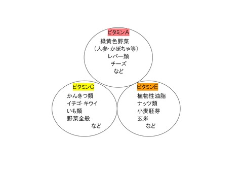 Microsoft Word - 文書 3