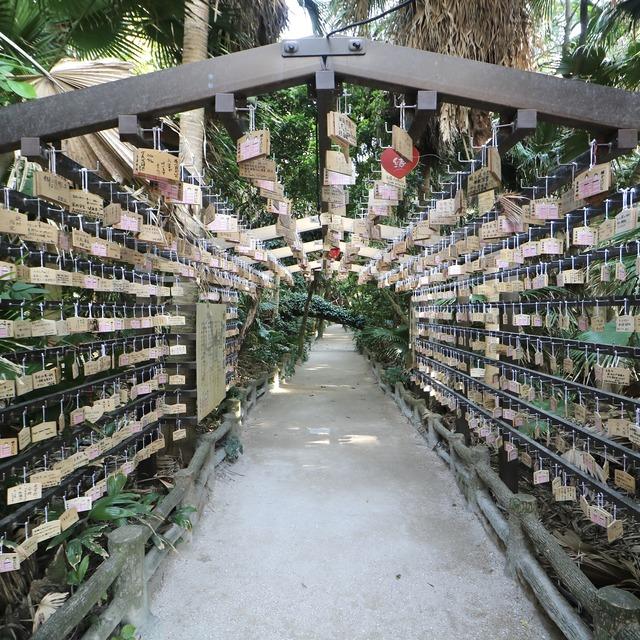 ORC福岡-宮崎便で行く女子旅。青島神社の祈りの古道。