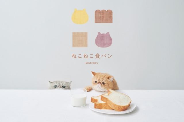 博多マルイ「ねこねこ食パン」