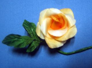 ネクタイの締め方 ネクタイの結び方 ネクタイの巻き方  オレンジバラ