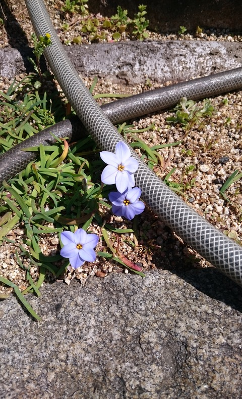 16-03-17-12-23-34-360_photo