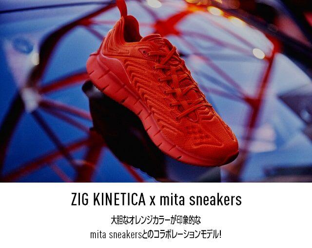 new_NL_MITA_ZIG_2003