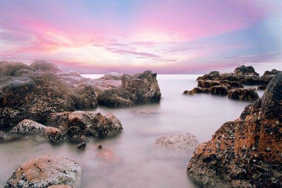 世界の海で野生の状態が保たれているのはわずか13パーセント(オーストラリア研究)