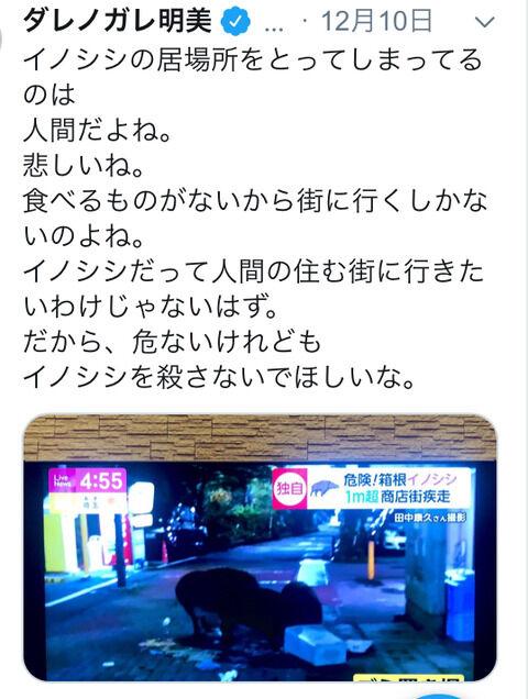 ダレノガレ明美、日本全国の農家を敵に回す「イノシシを殺さないでほしいな」