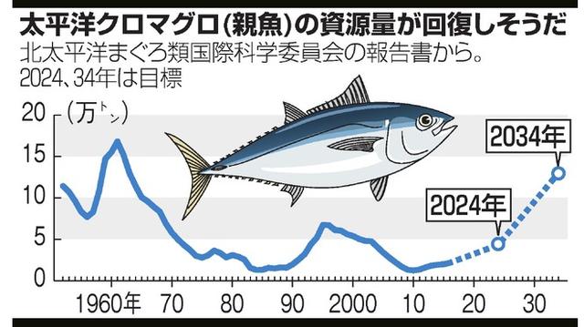 【クロマグロ】水産庁さん、とんでもないポジり方をしてしまう