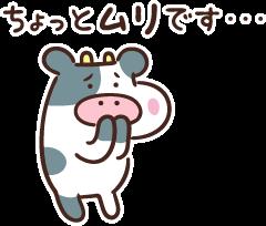 ノブコブ吉村、欅坂46が共演NGなワケwwwwww