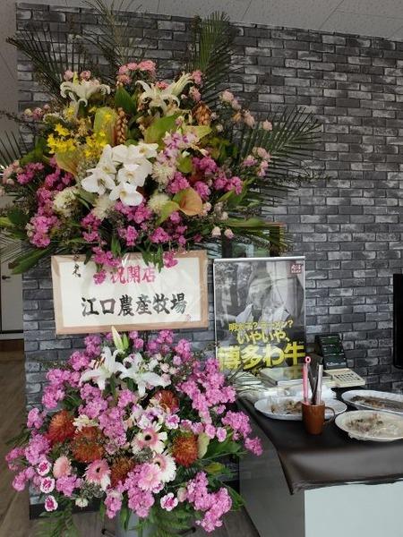 江口農産牧場からお祝いのお花が届いてました。