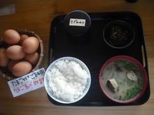 卵かけごはん定食