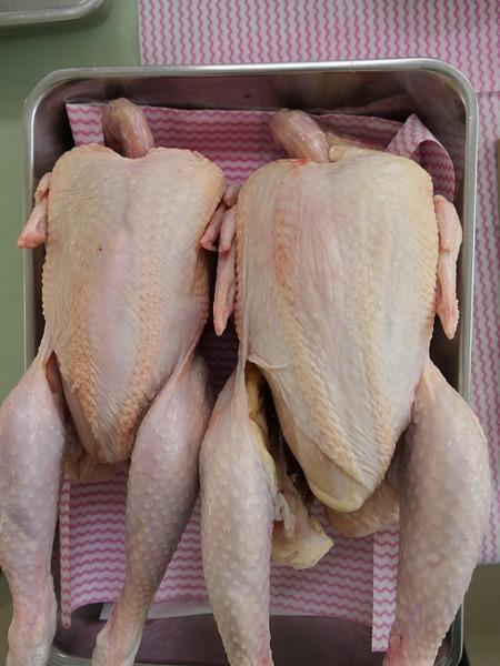 03丸鶏2羽を解体します。