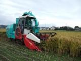 汎用収穫機飼料イネ2007