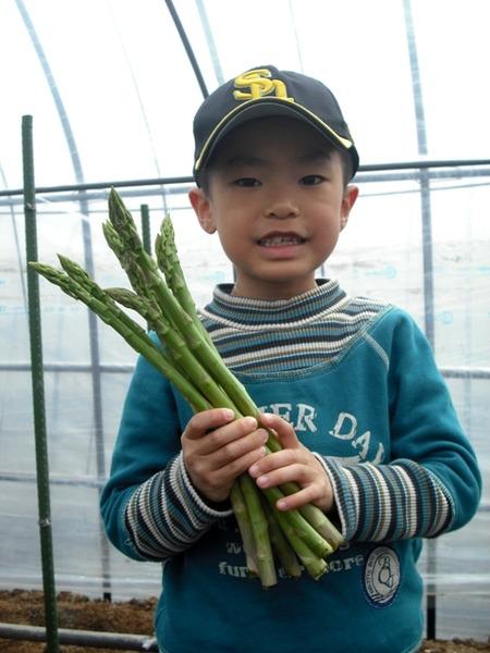 中島農場で農業農村体験ツアーが開催されました。