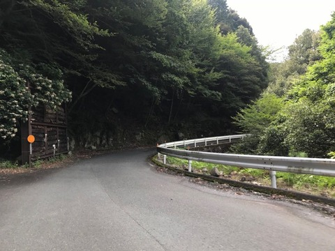県道1号は佐久間湖・天竜川の右岸をクネクネと遡上