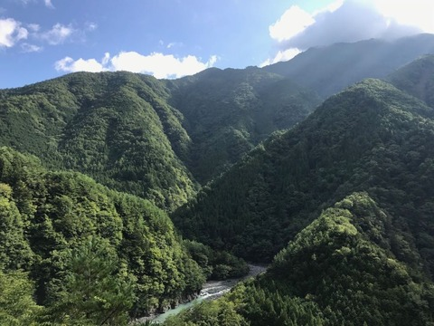 大きく回り込んで谷を抜ける川はまるでジオラマ