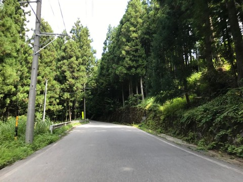 兵越峠の林道も走りやすい道路なので特に気負うことなし