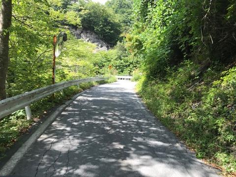 地蔵峠に向けて道はまた登り