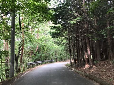 県道218号〜201号、大菩薩峠を登る