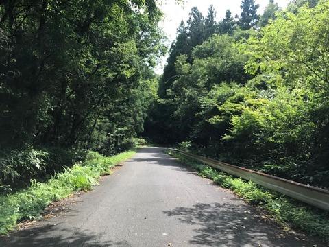 清内路トンネルをくぐったあと、県道8号線へ折れる