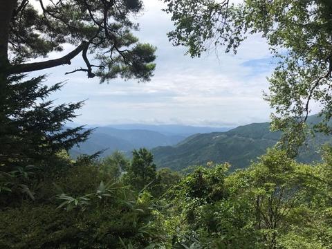 大平峠からの景色はちょうど木の枝が窓のように